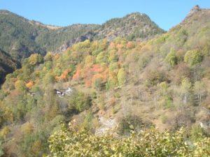 autunno-a-brione