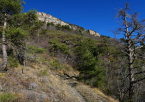 sentiero-prosegue-nel-vallone-di-Réfréi